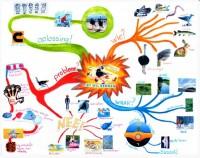 Leer mindmappen ...  voor kids - Ed van Uden 2